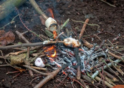 Forest School 5